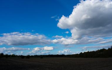 abendlicher Wolkenhimmel über Felder und Wiesen. Standort: Deutschland, Nordrhein - Westfalen, Borken