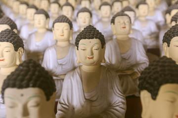 Budda faces and budda statues in meditation