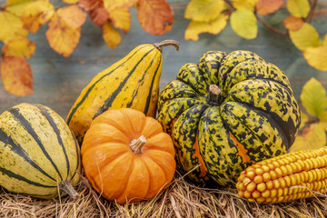 Erntedankfest mit Kürbis und Früchte