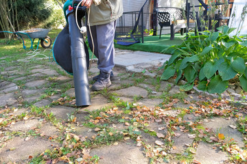 a woman cleans the leaves with a vacuum cleaner