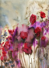 Photo sur Toile Inspiration painterly Beautiful watercolor paintings that bring flowers to wages, poppies