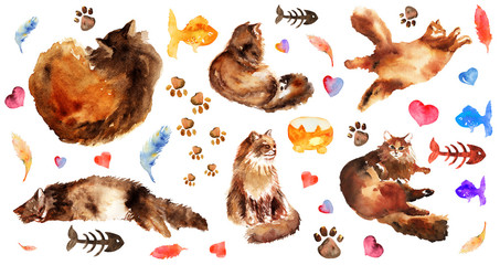 Watercolor hand drawn element set of fluffy cat in different poses: lazy, lying, dreaming, sleeping. and cute watercolor elements.