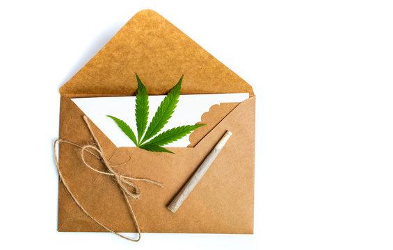 Marijuana leaf in an envelope on white