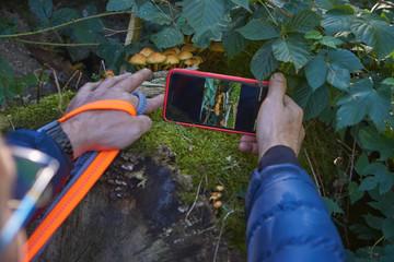 Fotografie mit Handy im Naturschutzgebiet Resser Mark, Gelsenkirchen