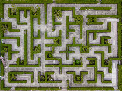 Garden Decoration is a maze with Green leaves wall fence with concrete