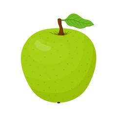 Vector cartoon green apple. Vegetarian fruit