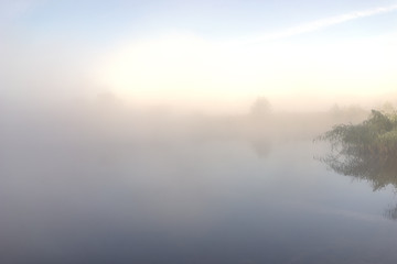 Morning mist over the lake. Dawn, riparian vegetation reflected in the water.