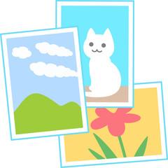 風景や動物の写真