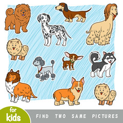 Find two the same pictures, education game. Set of cartoon dogs