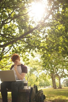 College student using laptop in campus