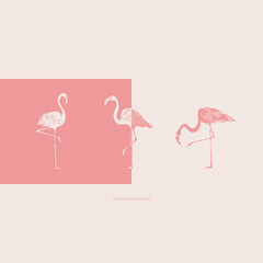 Vector illustration. Flamingos silhouettes. Vector card. Cover design.