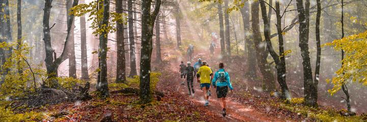 Joggen beim ersten Schneefall im Herbst, stimmungsvolles Waldpanorama