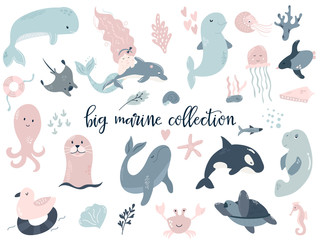 Big set of marine animals. Perfect for baby prints