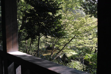 garden view from a wooden balcony in japan