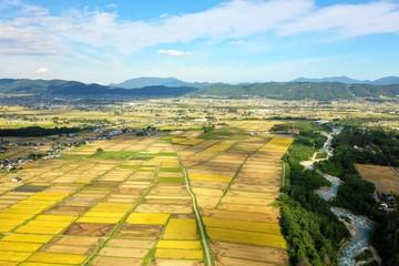 Foto op Canvas Meloen 日本の松川村 田園風景