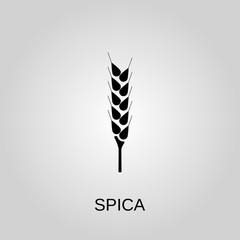 Spica icon. Spica symbol. Flat design. Stock - Vector illustration
