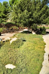 Beautiful garden under the sun in Nijar, Almeria