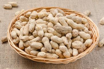 Peanuts in the peel on a light burlap.