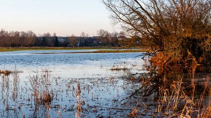 Fototapeta Jesienne rozlewiska rzeki Narew, Góra Strękowa obraz