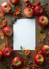 Autumn background with red apples