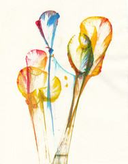 Art Abstract Flower. Hand watercolor painting on paper.