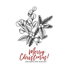 Hand drawn Christmas plants. Vector pine branch, fir, eucalyptus, holly and cotton. Xmas greenery bouquet. New Year greeting card. Winter seasonal greetings, party, celebration.