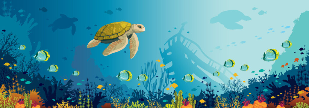 Underwater wildlife - turtle, coral reef, fish, sunken ship, sea.