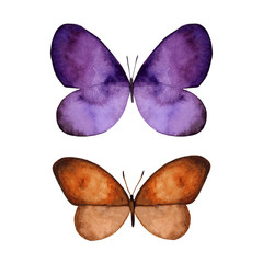 Watercolor colorful butterflies set, isolated on white background. Violet and brown butterfly illustration. Design for card, invitation, greeting, letter, poster, cover.