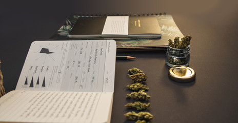 Cannabis bud lineup, stationery, joint, jar, pages on black background