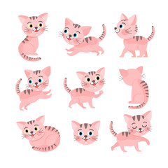 Set of little pink cats, vector illustration