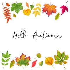 Autumn background realistic fall leaf