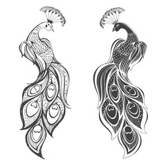 Peacocks. Vector illustration, two variants. Isolated elements on white background.