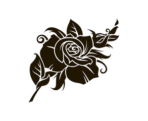 black rose flower image isolated on white background