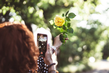 Woman photographing a yellow rose on a smartphone