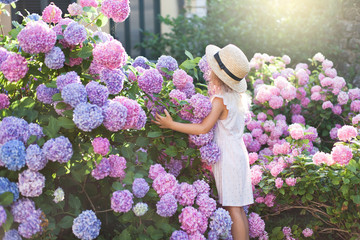 Spoed Fotobehang Hydrangea Little girl in bushes of hydrangea flowers in sunset garden. Flowers are pink, blue, lilac and blooming by country house. Kid is in pink dress, straw hat. Romantic concept of childhood, tenderness.