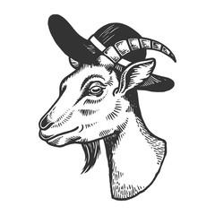 Goat inbroad brim hat engraving vector illustration. Scratch board style imitation. Black and white hand drawn image.