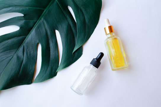 Monstera leaf on a white background with a white and yellow bottle of serum for care. Concept skin and hair care