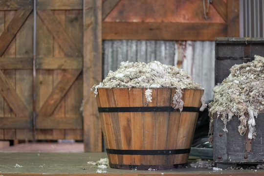 Sheep skin. A wooden bucket full of sheep skin after sheep shearing. Vintage and rustic setting. Soft focus
