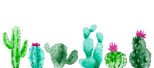 Set of watercolor cactus, succulent, isolated watercolor illustration on white Natural watercolor design elements, botanical collection. Design for wedding,greeting card,photos,blogs,wreaths,pattern.