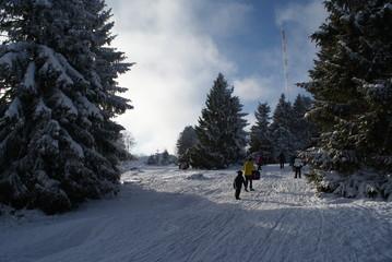 toboggan with kids in snow hard winter in Germany harz