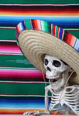 Day of the Dead.  Human skeleton wearing a beautiful serape sombrero (hat) and a serape blanket as a backdrop