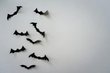 Flying bats on light grey background