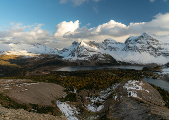 A panorama of some fall colors in the Canadian Rockies below epic snow covered peaks