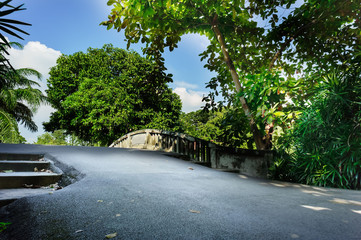 Asphalt road on canal bridge around green forest. Photography in blue sky day, bigger trees and forest in background. It best for landscape, photography and travel.