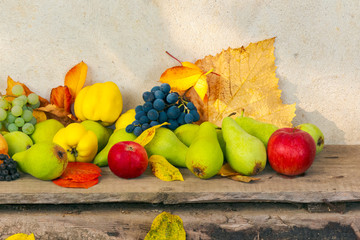 autumn harvest background. lots of fruits on the wooden desk