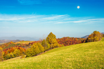 autumn landscape with grassy meadow and row of trees in autumn foliage. mountain ridge in the distance. full moon on a blue daytime sky