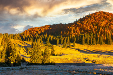 gorgeous sunrise in mountains. forest in fall color. distant mountain lit by rising sun. meadow in golden light