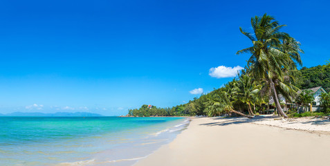 Tropical beach on Samui