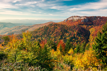 beautiful landscape in mountains of Romania. cliff above the forest in fall color. beautiful view in evening light with blue sky