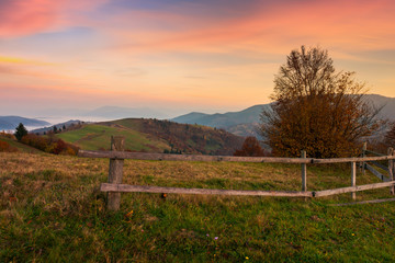 rural area in mountains at dawn. fence around the orchard on hill. beautiful autumn scenery